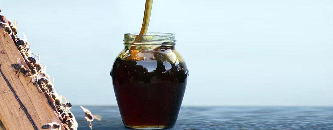 High quality ecological honey